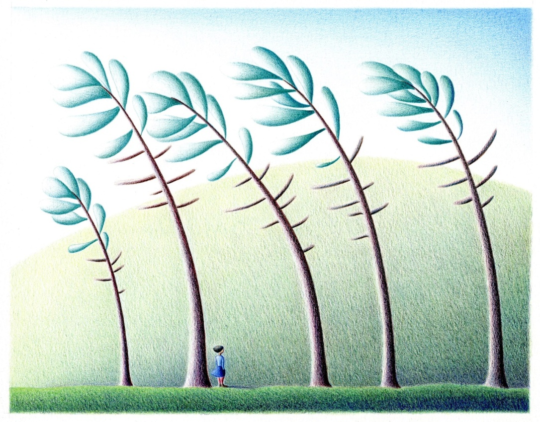 Spring wind_web